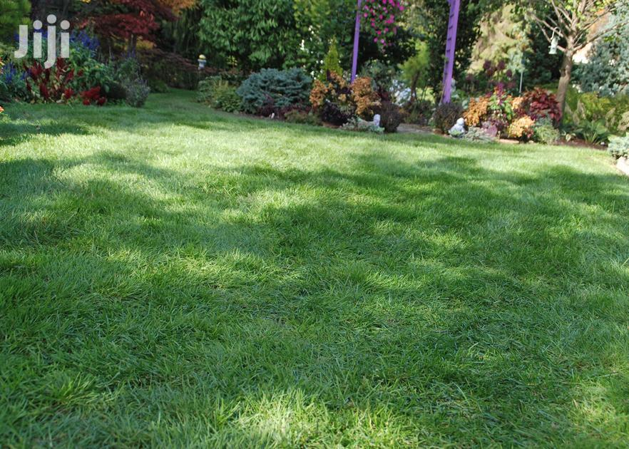 Lawncare & Grass Cutting Services Mombasa.Very Affordable | Landscaping & Gardening Services for sale in Kisauni, Mombasa, Kenya