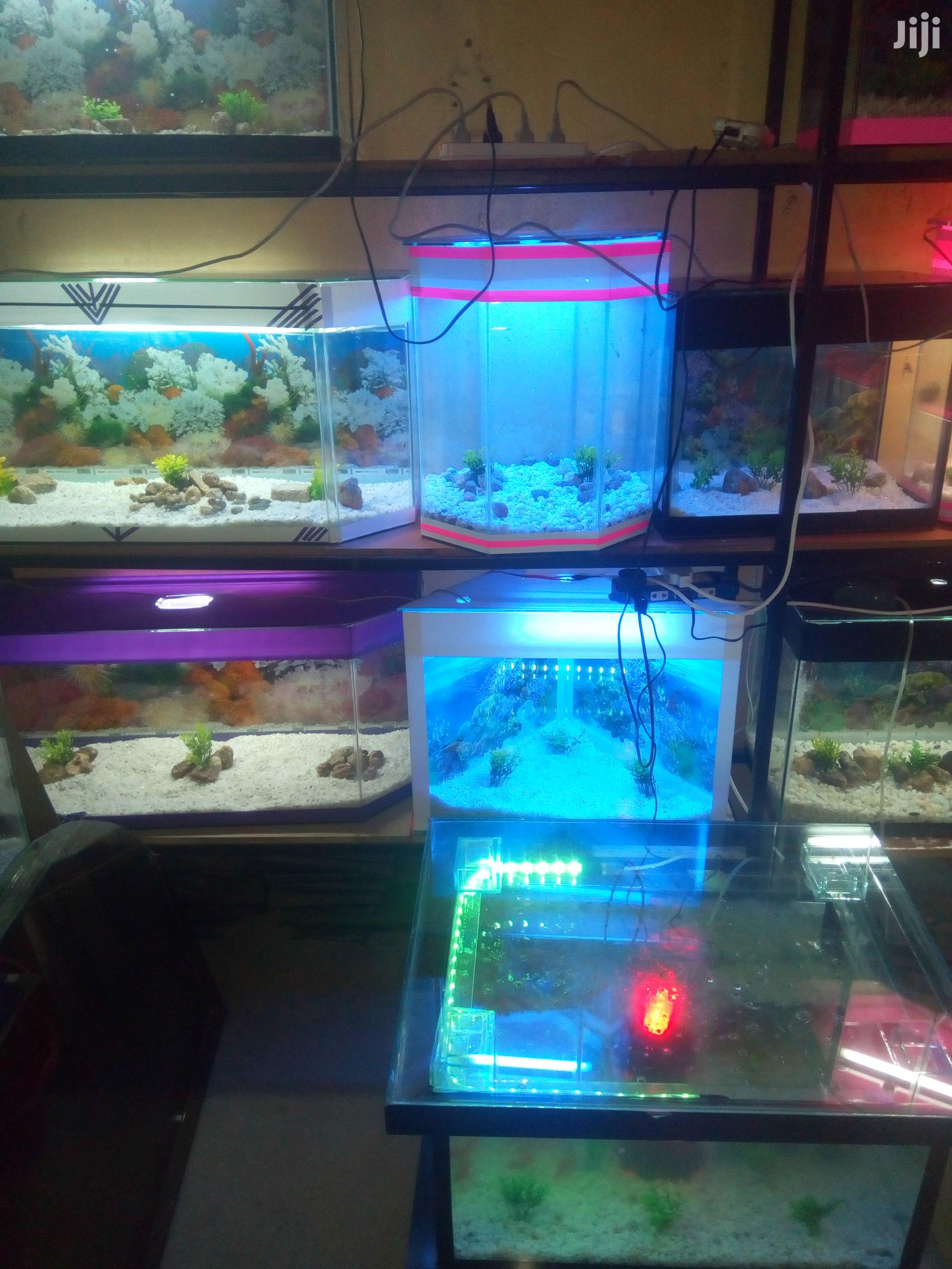Coffee Table Aquarium | Fish for sale in Embakasi, Nairobi, Kenya