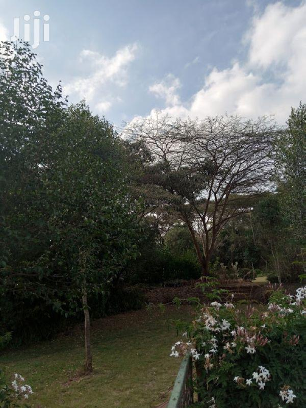1 Acre in Karen Kikeni Drive | Land & Plots For Sale for sale in Karen, Nairobi, Kenya