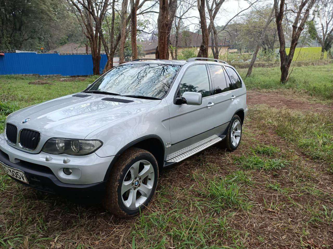 Archive: BMW X5 2006 3.0i Sports Activity Silver