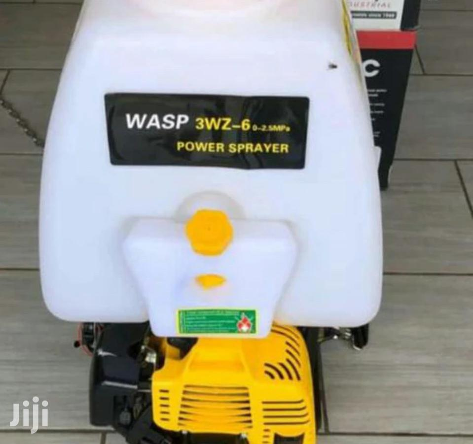 Knapsack Sprayer Petrol Powered
