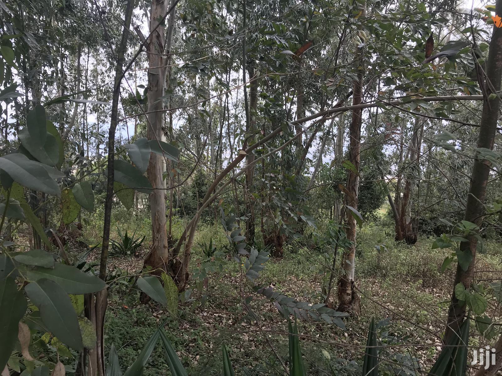 5acres Mua Hills | Land & Plots For Sale for sale in Mua, Machakos, Kenya