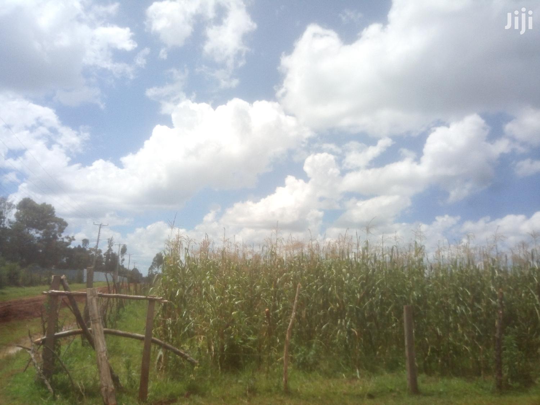 2acres Land for Sale Outspan Eldoret(North Rift)