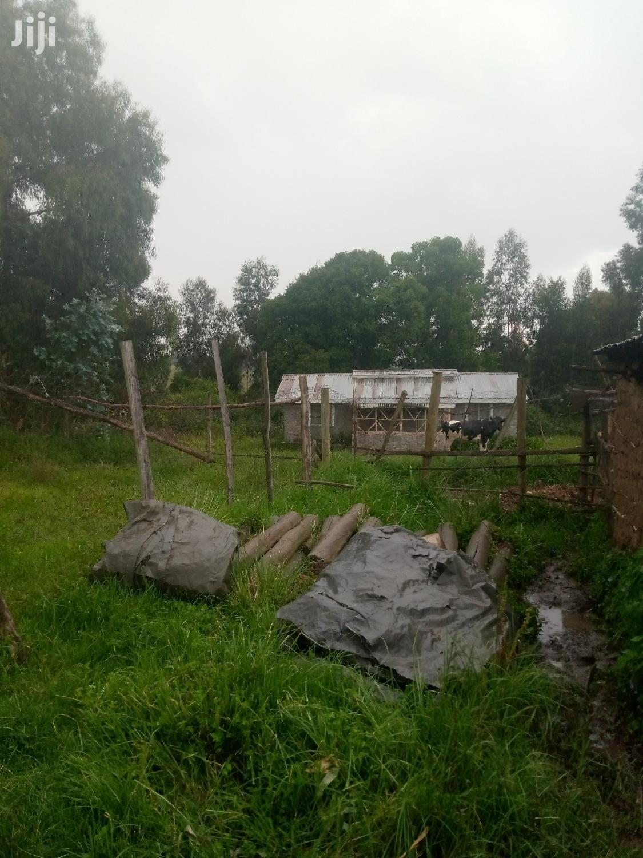 3-Acre Farmland on Sale in Kipipiri Nyandarua County