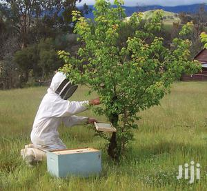Wanted ! Experienced Beekeeper | Part-time & Weekend Jobs for sale in Nairobi, Nairobi Central