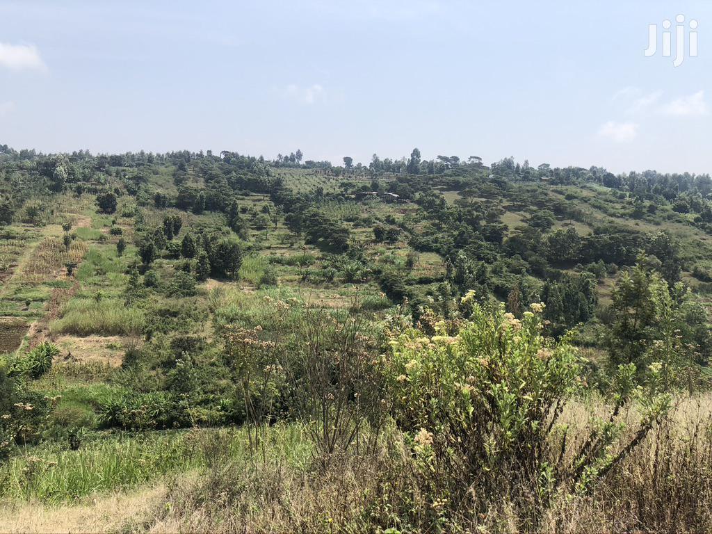Land for Quick Sale-Nyeri Kiganjo