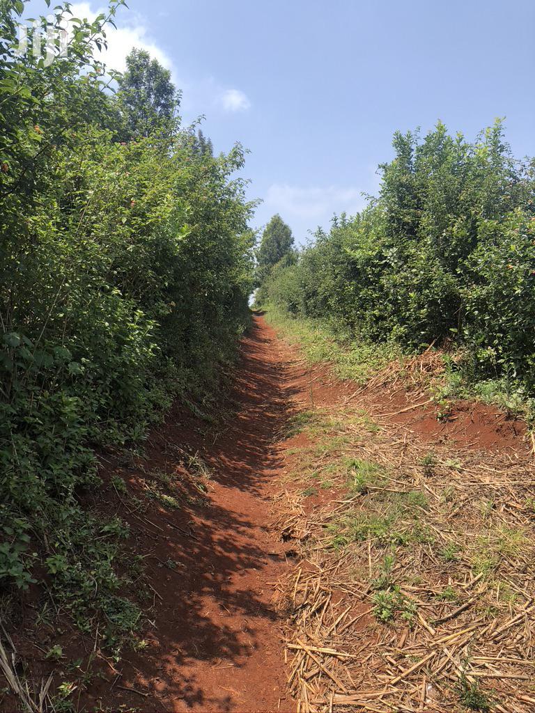 Land for Quick Sale-Nyeri Kiganjo | Land & Plots For Sale for sale in Kiganjo/Mathari, Nyeri, Kenya