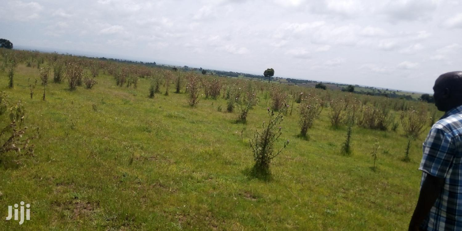 Archive: 100acres on Quick Sale Narok