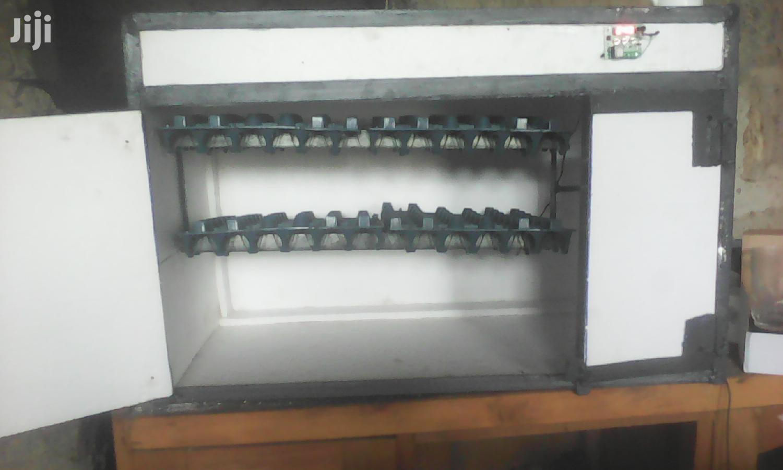 120egg Incubator