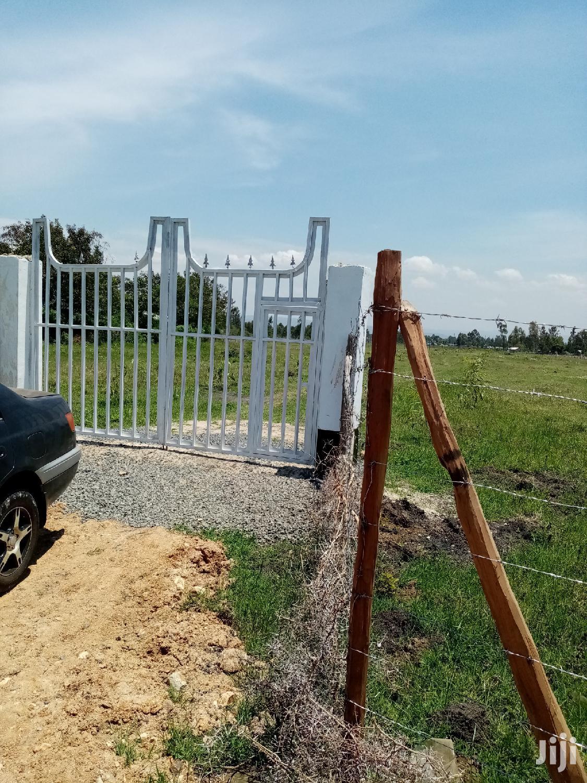 Nyamasaria Nyalunya Plot (Tosha Area)