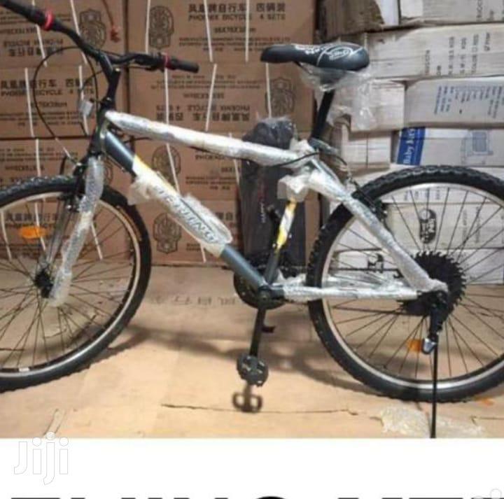 Mountain Beijing Bike 26