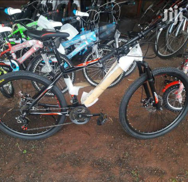 Mountain Bike Size 26