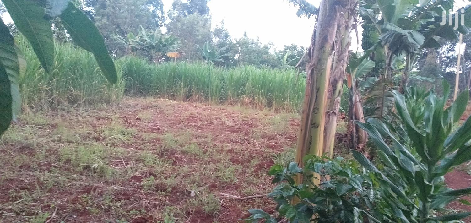 Archive: Prime Land For Sale Kisii : Egesa Nyamorenyo 50 By 100