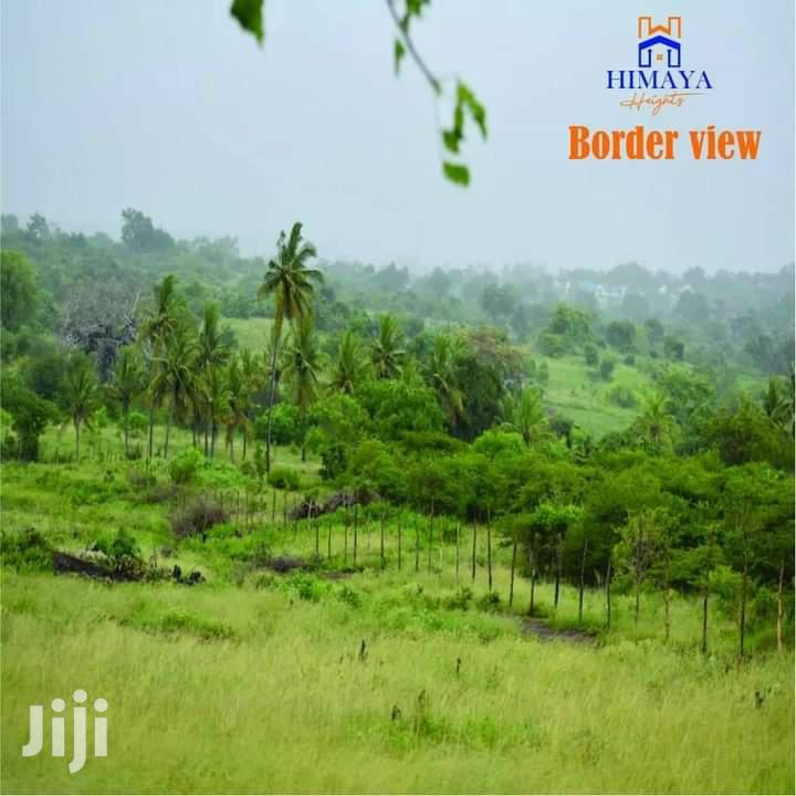 Archive: Boarder View - Lungalunga