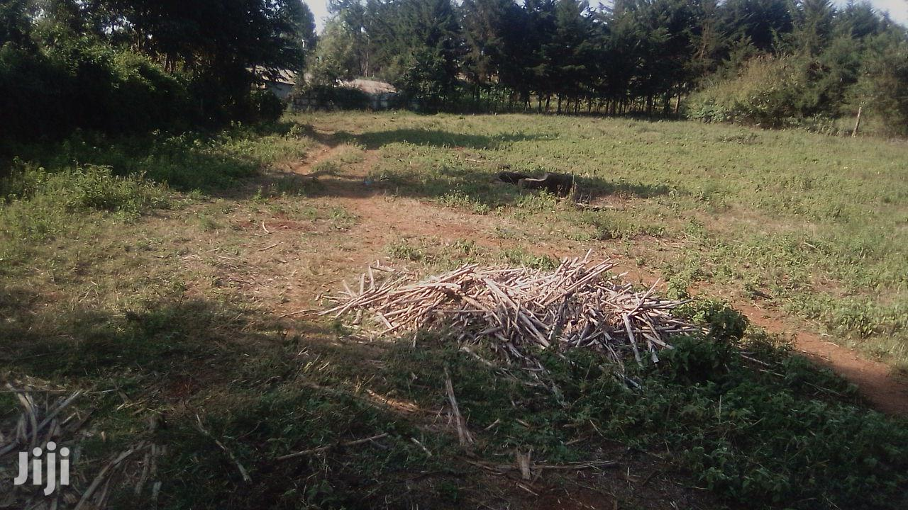 Archive: Kikuyu Ondiri Two 1/4 Acre Plots