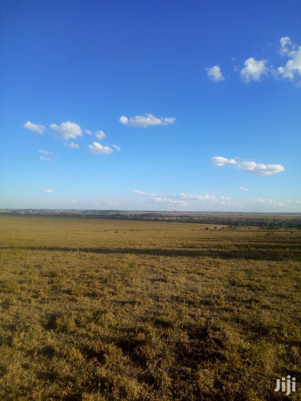 Prime 1/4 Acre Plots Acacia Kitengela