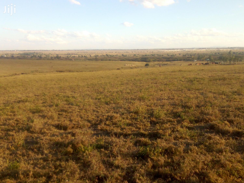 Prime 1/4 Acre Plots Acacia Kitengela   Land & Plots For Sale for sale in Kitengela, Kajiado, Kenya
