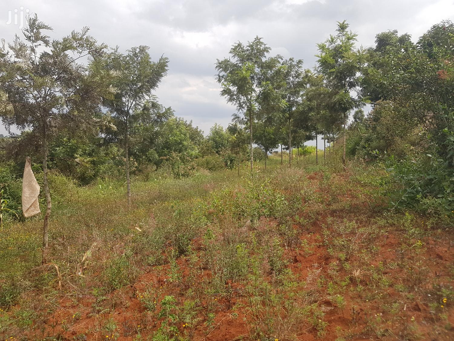 3acres of Land for Sale | Land & Plots For Sale for sale in Mua, Machakos, Kenya