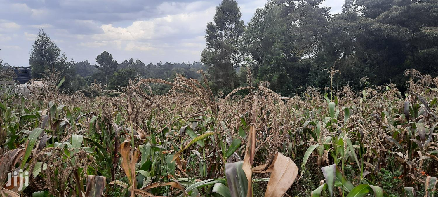 100x100 Plot Gitaru Kiambu County | Land & Plots For Sale for sale in Gitaru, Kiambu, Kenya