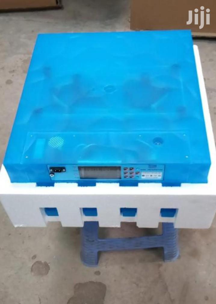 Automatic Incubator 64egg Available