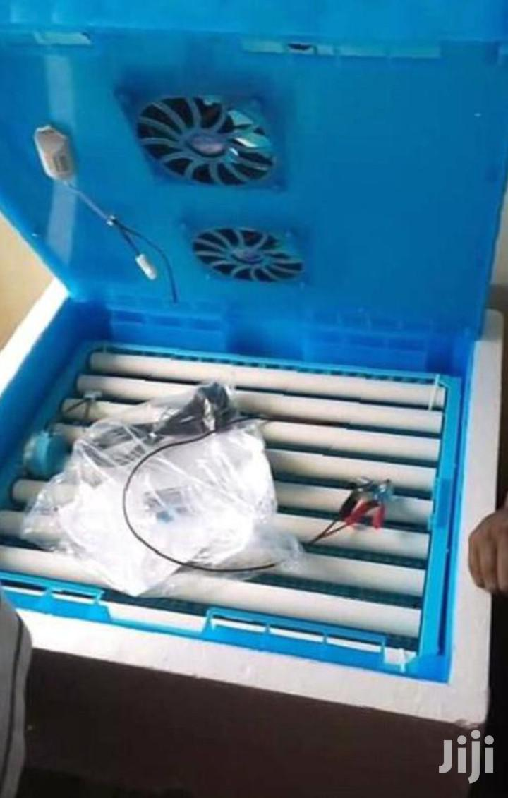 Automatic 64eggs Incubator With A Warranty