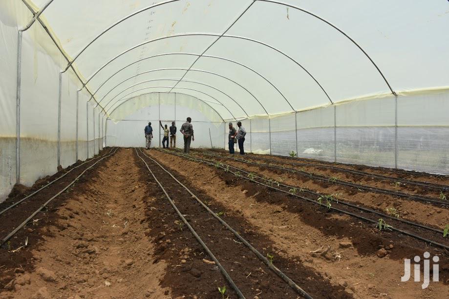 Greenhouse Construction in Kenya