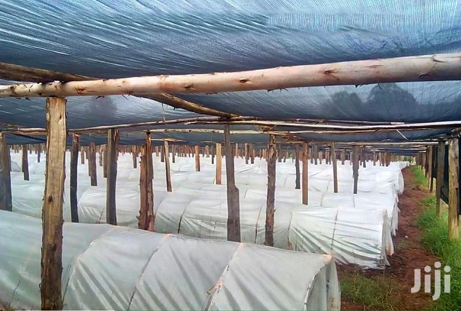 Shade Nets In Kenya
