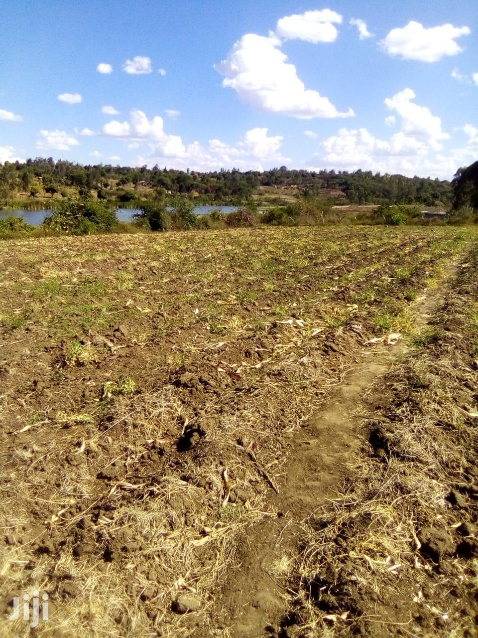 Archive: Shamba For Farming