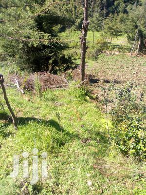 1/2 Acre on Sale at Ndunyu Kinangop   Land & Plots For Sale for sale in Nyandarua, North Kinangop