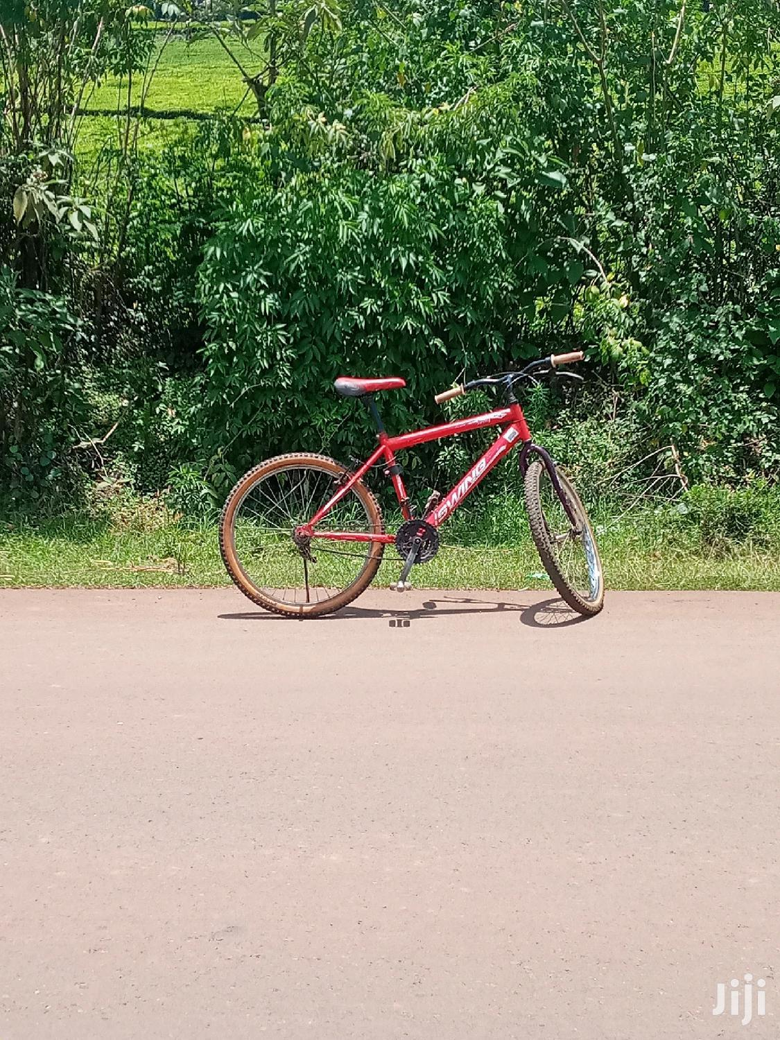 Archive: Mountain Bicycle Size 24 With No Gear System