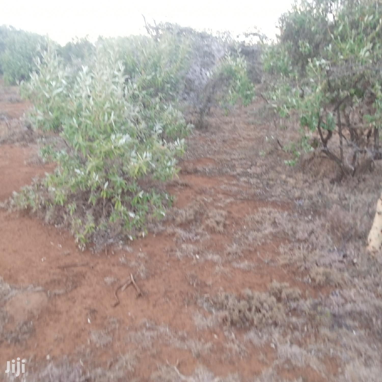 25 Acres Serashi at 100k Per Acre | Land & Plots For Sale for sale in Ngong, Kajiado, Kenya