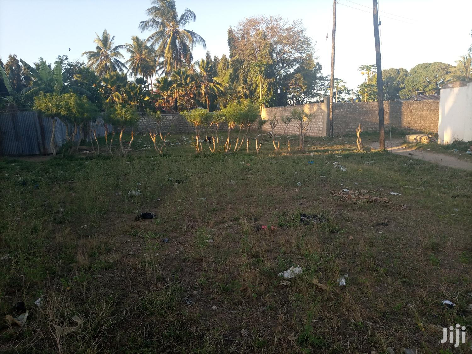Nice Plot For Sale