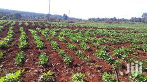 3 Acres at Kagio.   Land & Plots For Sale for sale in Kirinyaga, Mutithi