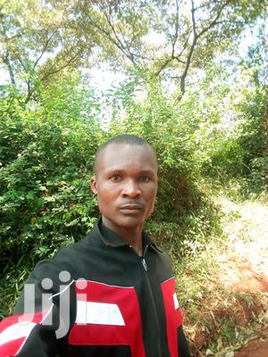 Indoor Plant Care Gardener | Housekeeping & Cleaning CVs for sale in Nairobi, Runda