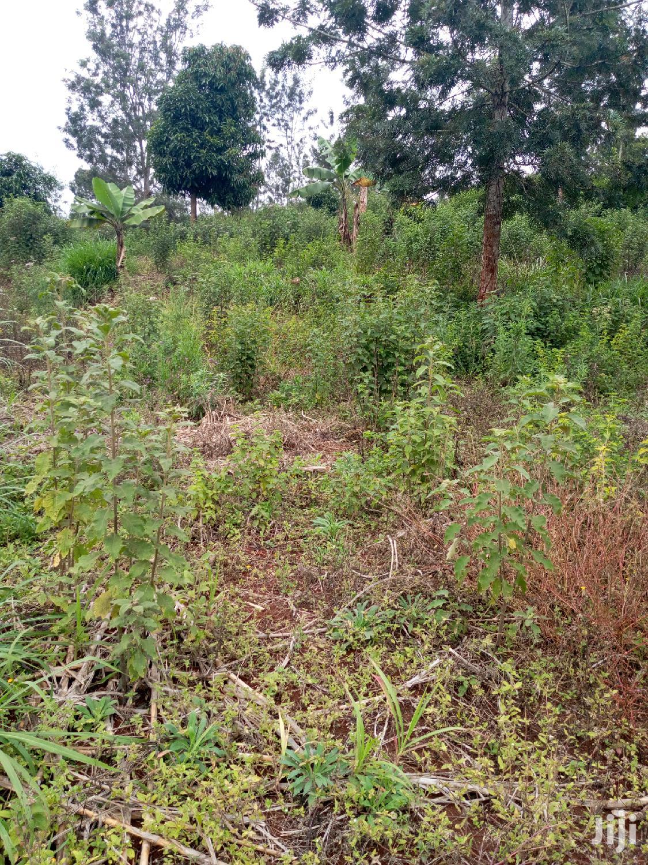 28 Acres For Sale In Embu (Kiritiri) | Land & Plots For Sale for sale in Mwea, Embu, Kenya