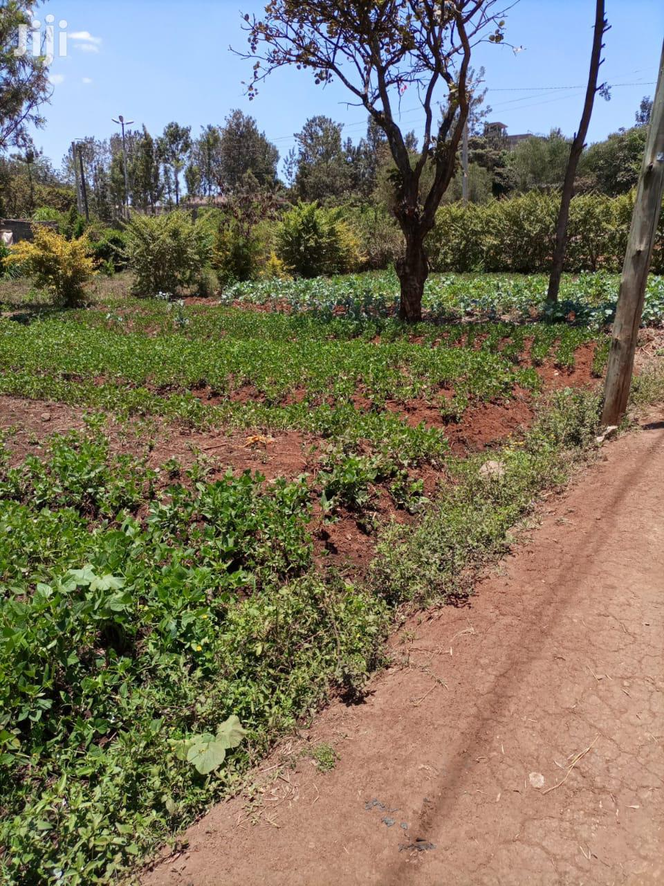 Ruaka Selling Suitable Land For Flats 50 By 60 And 50 By 100