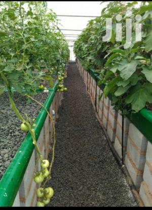 8m By 15m Greenhouse | Farm Machinery & Equipment for sale in Nairobi, Nairobi Central