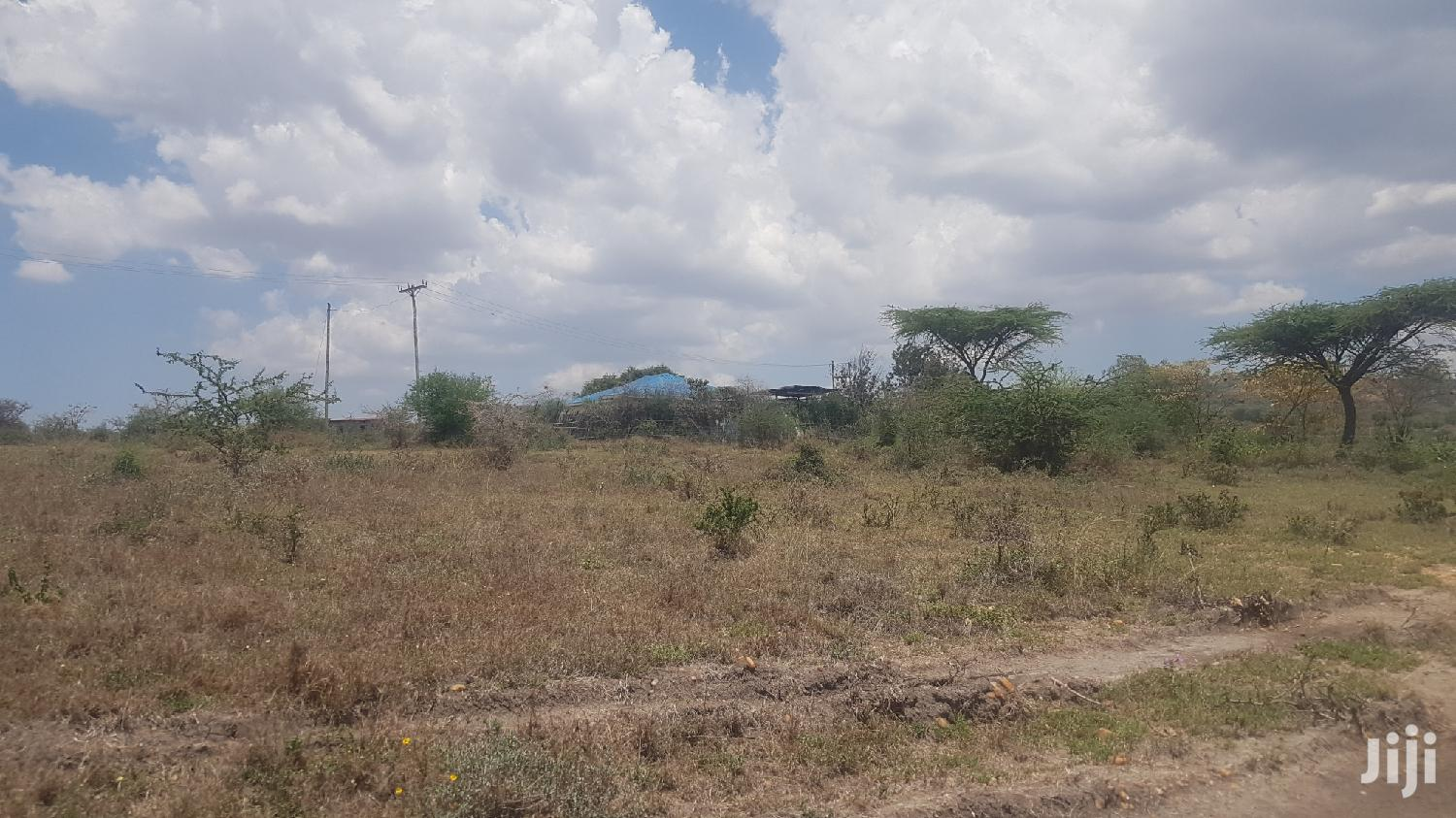 7acres Of Land