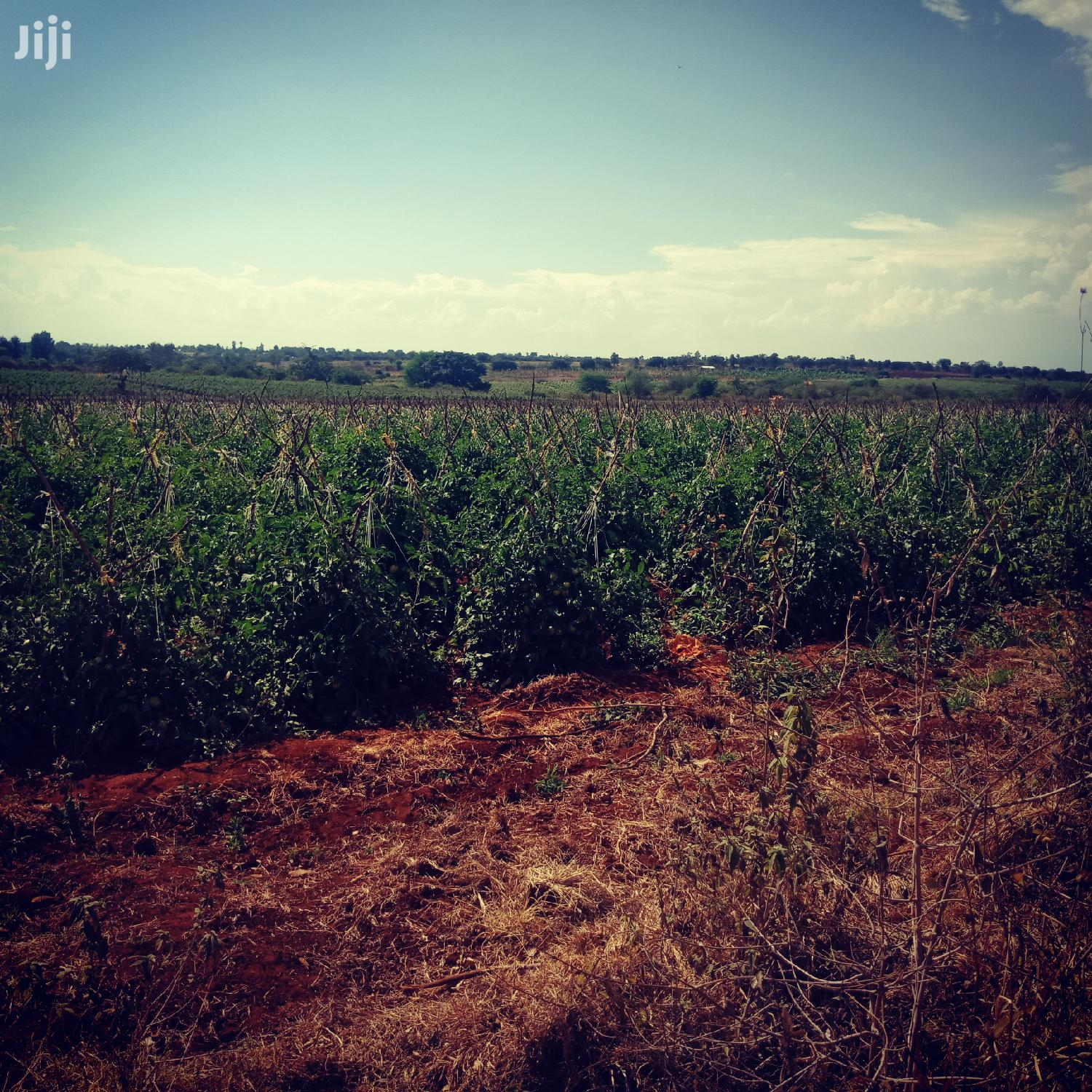 400 Acres Of Agricultural Land For Leasing At Embu County   Land & Plots for Rent for sale in Gatanga, Murang'a, Kenya