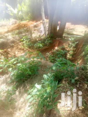 Farm Land At Kinanie 1.3kms From Mombasa Rd   Land & Plots For Sale for sale in Mavoko, Kinanie