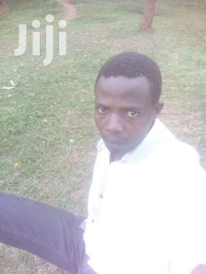 Driver Job | Driver CVs for sale in Nairobi, Kitisuru