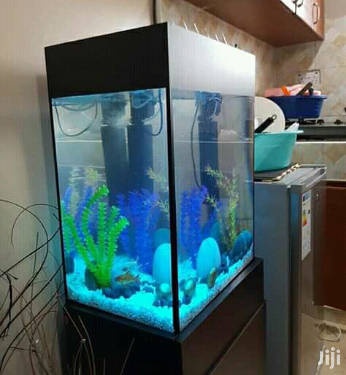 Mini-tower Aquarium.