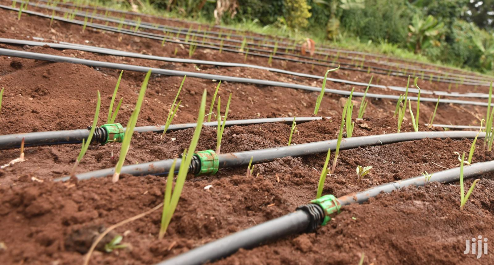 Drip Irrigation Pipes And Driplines