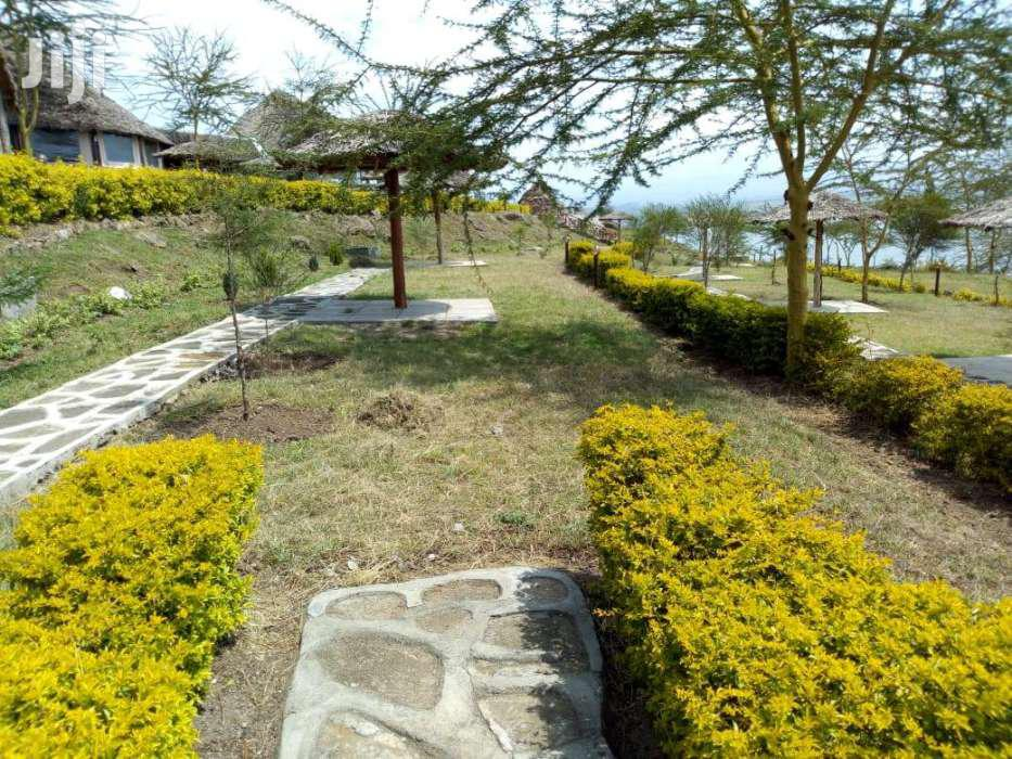 Archive: LODGE FOR SALE AT LAKE ELEMENTAITA