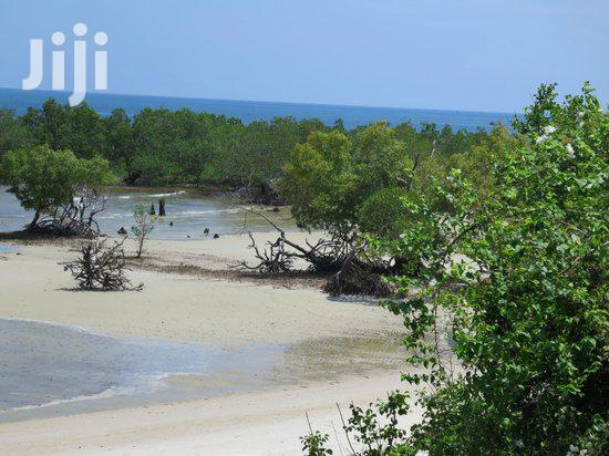 Shimoni 3 Acres Beach Plot for Sale