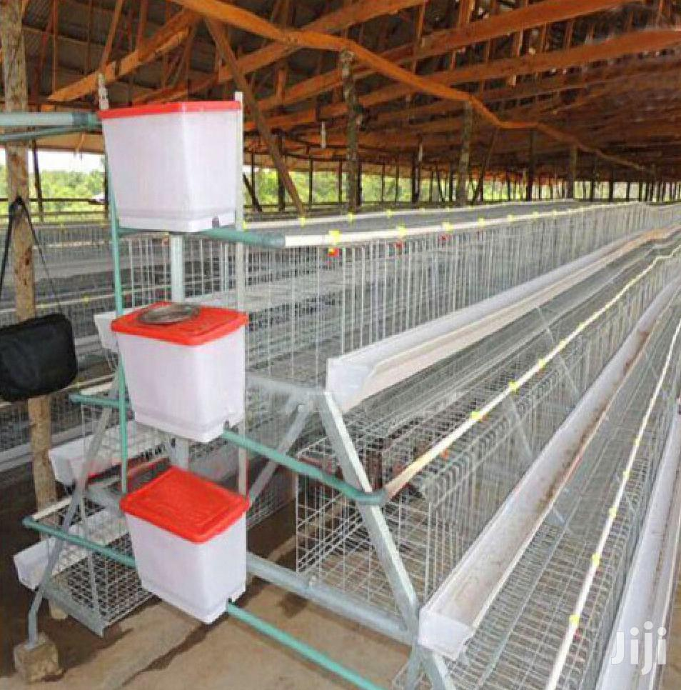 From China Chicken Cage In Kenya Godown Lowest Price Sell