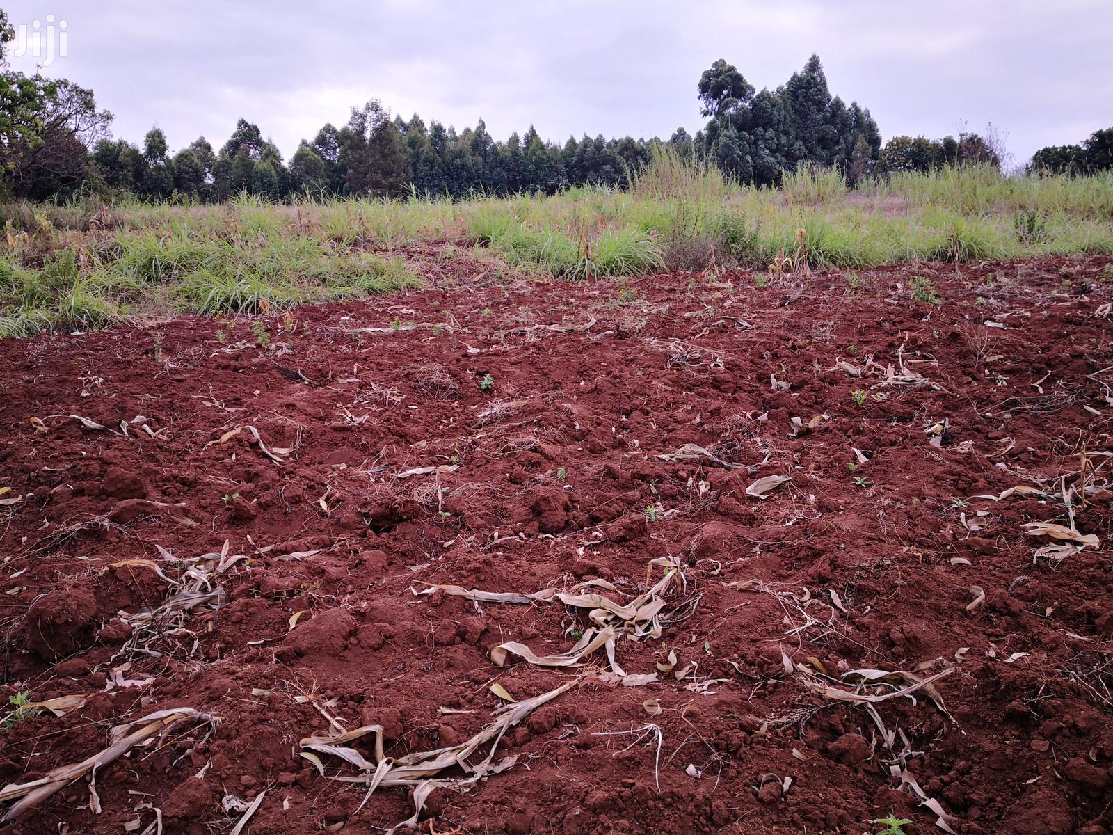 Archive: 1 Acre for Sale in Thigio Kikuyu Kiambu.
