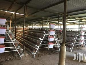 Chicken Cages   Farm Machinery & Equipment for sale in Nairobi, Kasarani