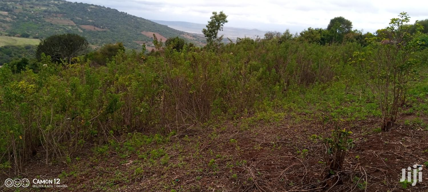 Archive: 5acres in Mua Hills