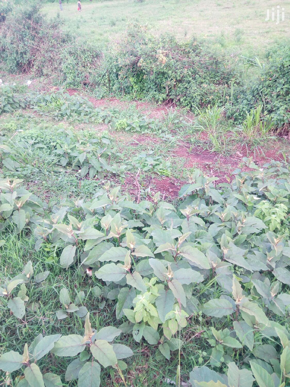 1.1 Acres Plot in Kilimani Yaya for Lease | Land & Plots for Rent for sale in Kilimani, Nairobi, Kenya